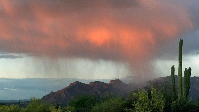 Desert rain outside Saguaro National Park
